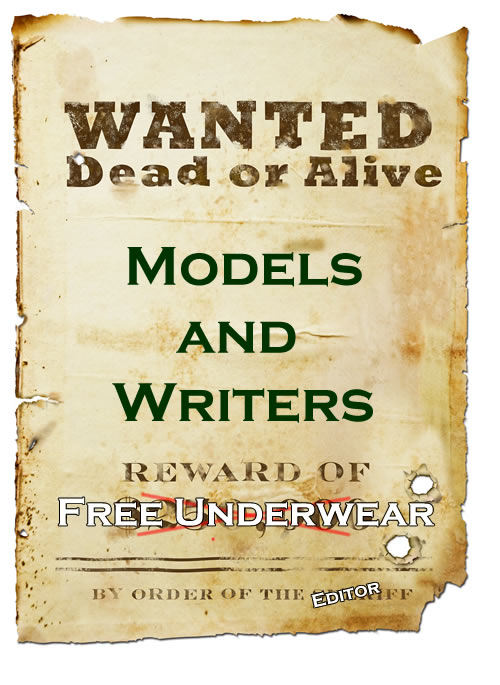 writers wanted looking for a freelance gig or a job the writers wanted ...