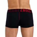 Gregg Homme Volumator Boxer Briefs 04