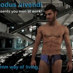 Modus Vivendi Denim Underwear Collection a08