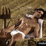 modus-vivendi-harvester-collection-01