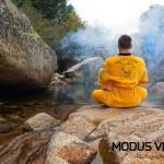 Modus Vivendi  Buddha Line 007