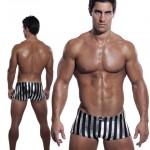 1 Black and Silver Deco Stripe 495
