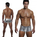 1 Silver Fox Box-Cut Front and Back 495