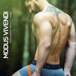 Modus Vivendi Bear Line 07